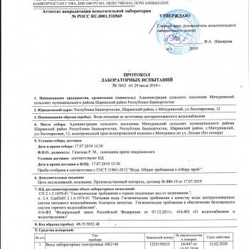 с.Мичуринск